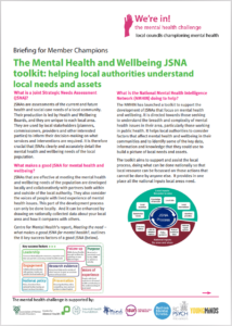 Briefings For Councillors The Local Authority Mental Health Challenge